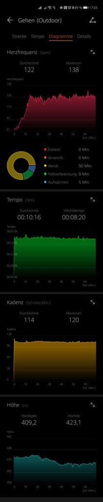 HUAWEI-Health-App-Statistik-Nordic-Walking2