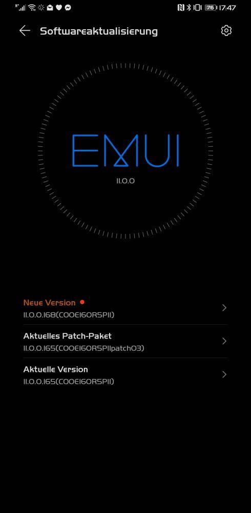 HUAWEI Mate 30 Pro Firmwareupdate 11.0.0.168