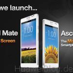 CES2013_launch_D2_mate