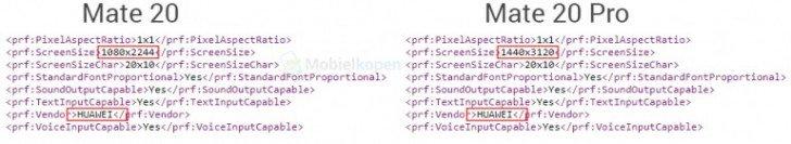 Huawei Mate 20 Pro Display Auflösung