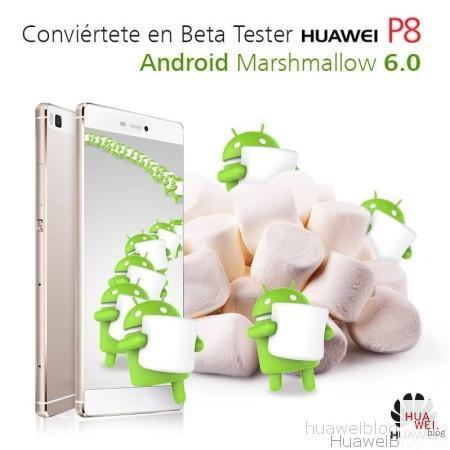 Huawei P8 Marshmallow Test