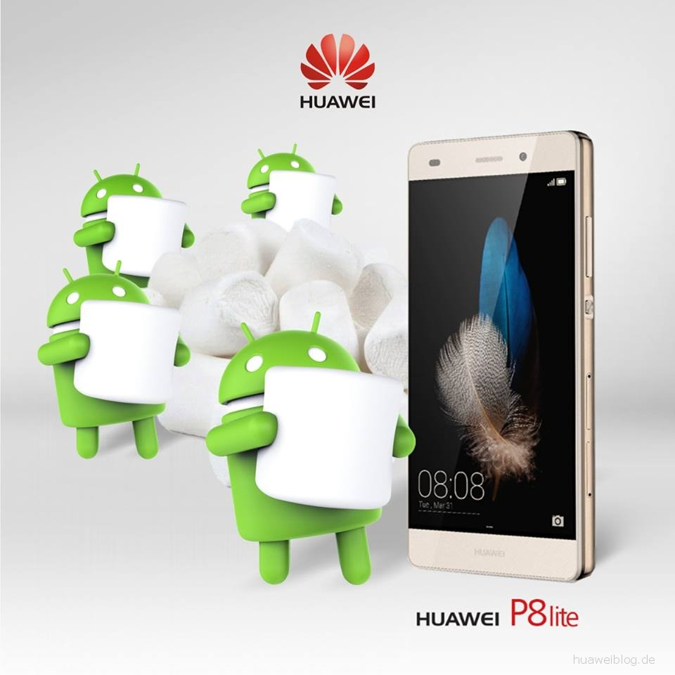 Huawei P8 Lite Dual SIM Android 6 Marshmallow Firmware Update Download